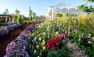 聚焦花园经济 引领健康生活——2020世界花园大会圆满落幕