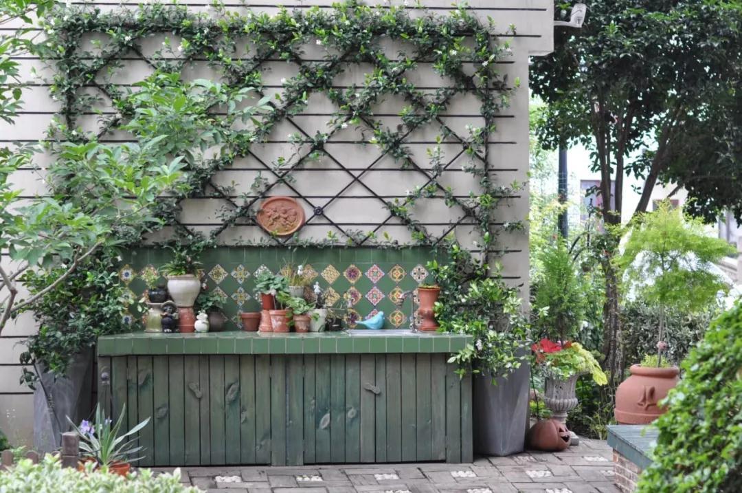 在当年西施采花的地方,她用3年暴改房前屋后,把家安在了没有围墙的花园里